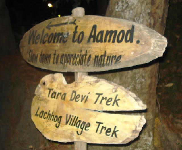 Aamod Shimla