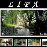 Lipa - 2011