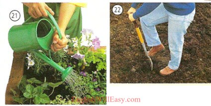 Gardening - Housing - Photo Dictionary