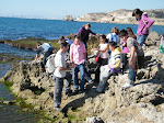Taller de Conservación de la biodiversidad marina, Peñón del Cuervo