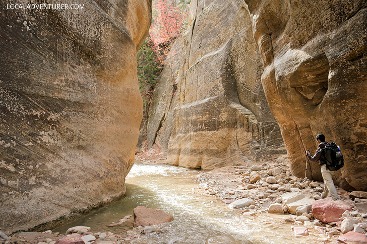 Zion Narrows Hike.