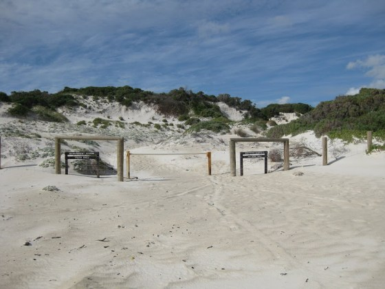 No missing the exit from Deepdene Beach to the Deepdene Campsite - Cape to Cape Track