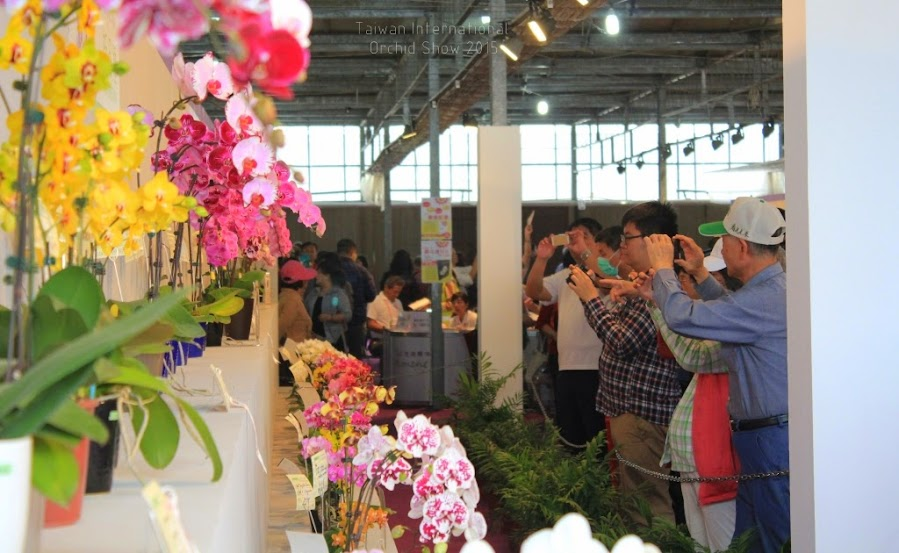 2015 台灣國際蘭花展-7