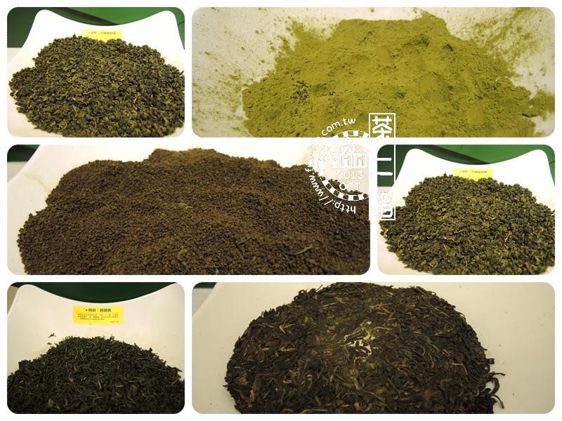 茶二館放一些茶種讓大家可以親手觸摸、觀察各式茶葉的型態