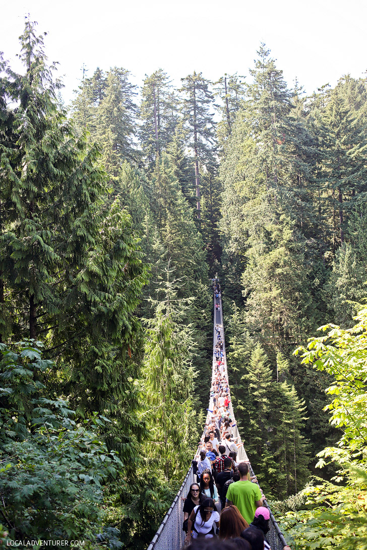 Vancouver Suspension Bridge (Things to Do in Vancouver).