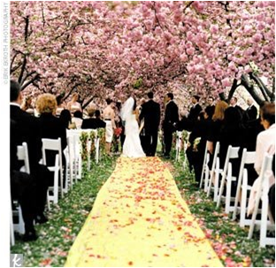 Outdoor Wedding Ideas For Spring On A Budget - Wedding Invitation ...