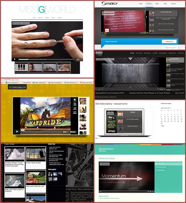Video Gallery WordPress Plugin /w YouTube, Vimeo, Facebook pages 17