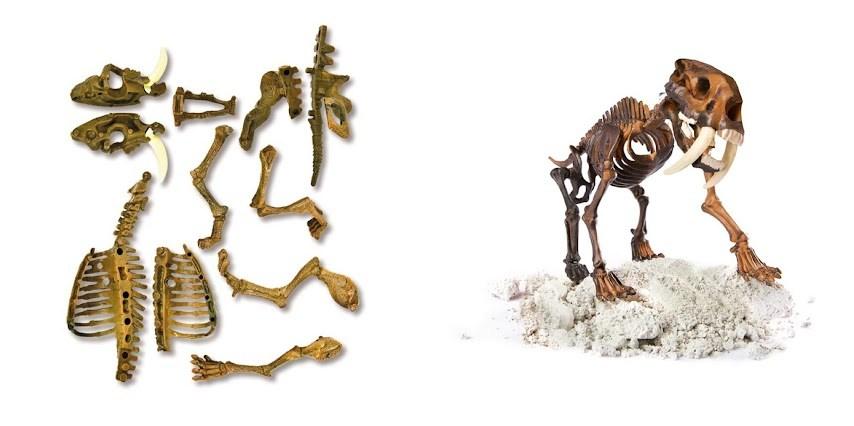 juego de arqueología arqueojugando de Clementoni smilodon