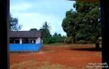 View of the school from my front door