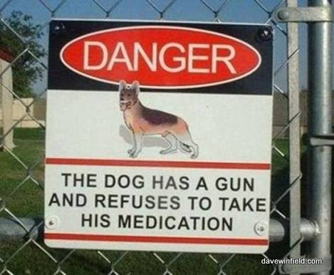 The Dog Has A Gun!