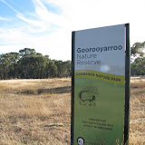 Goorooyarroo Nature Reserve--ACT-Australia