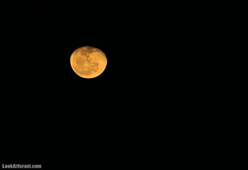 Последняя Луна 2012, первая Луна 2013
