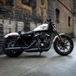 Harley Davidson Sportster 883 Wallpaper
