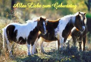 Kostenlose Geburtstagswunsche Bilder Gifs Grafiken Cliparts