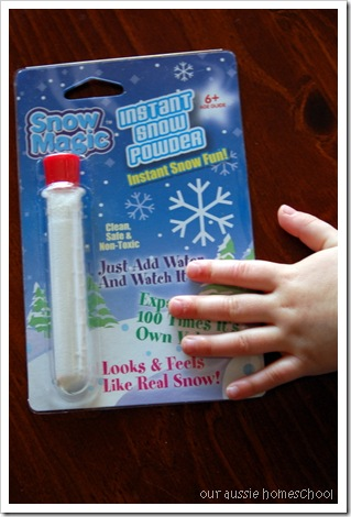 Bear Hunt Sensory-Snow! ~ Our Aussie Homeschol