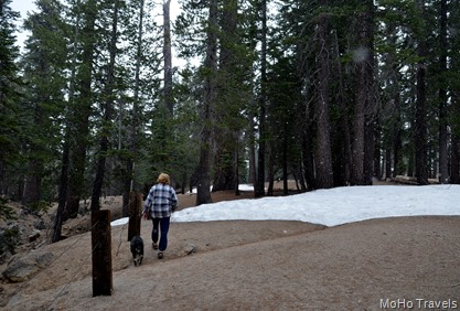 earthquake fault trail, and yes, it is snowing