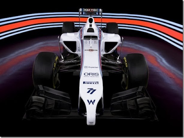 williams_fw36_8