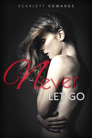 Cover_~_Never_Let_Go