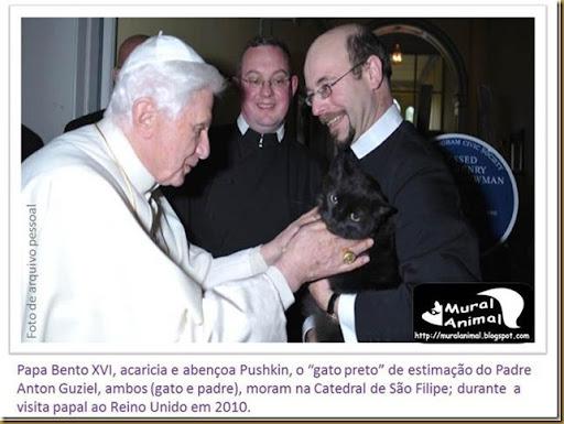papa_bentoXVI-gatos