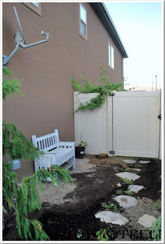 backyard 2011 021