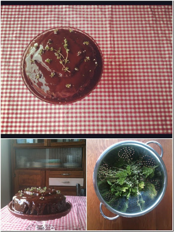 marzy's bday cake collage nov 2012