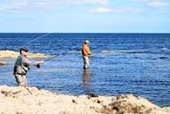 Bass fishing Wexford