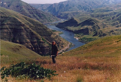 so wild, but still a road along the Snake River in this part of the canyon
