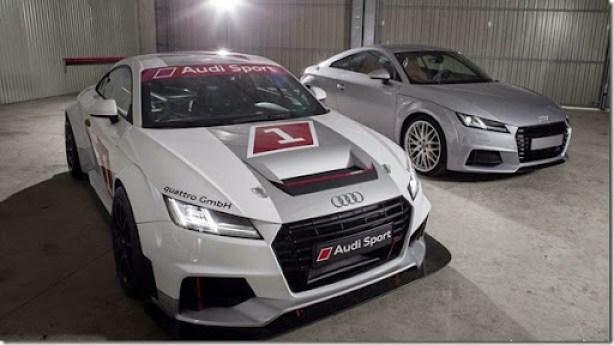 Audi TT de corrida (6)