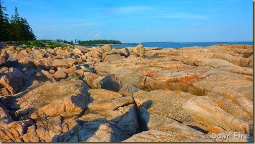 Acadia National Park_029