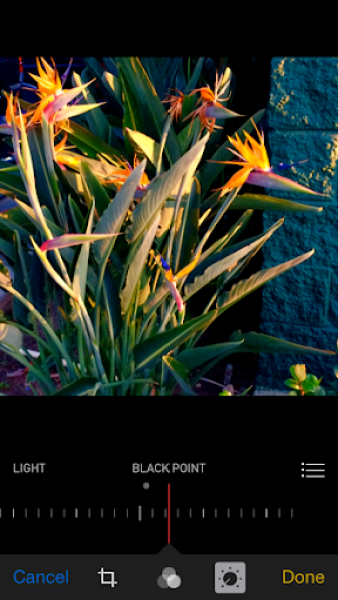 iOS 8 photos app black point adjustment