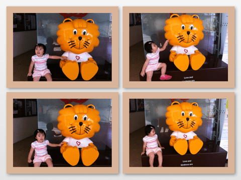 Singa collage