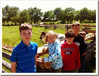 livestock judging 101