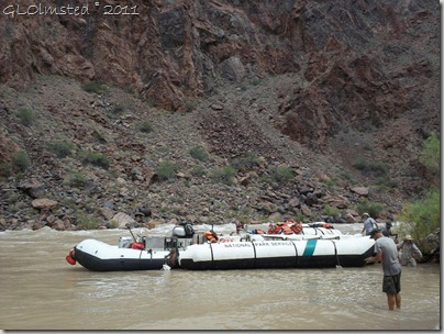 Lower Tuna campsite for lunch ~RM100.1 Colorado River Grand Canyon National Park Arizona