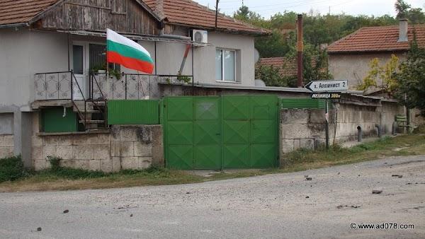 basarbovo-31.jpg