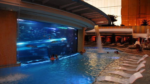 Aquarium Pool Golden Nugget, Las Vegas