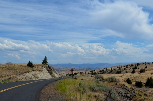 the road to Clarno and Fossil