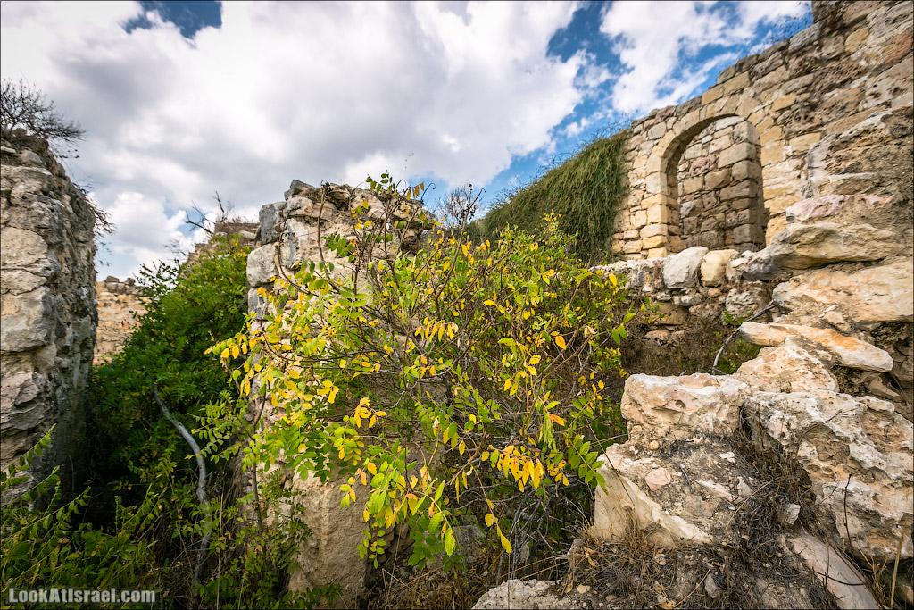 LookAtIsrael.com - Фото путешествия по Израилю   Крепость Бельмонт в кибуце Цуба   Belmont fortress
