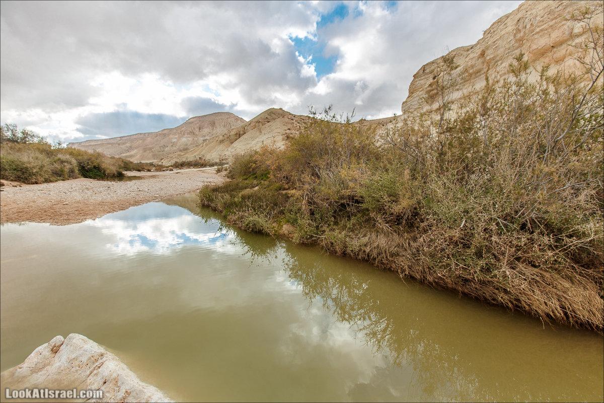 Лунные пейзажи пустыни Негев | Lunar landscapes of the Negev | LookAtIsrael.com - Фото путешествия по Израилю