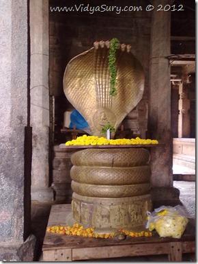 Vidya Sury Adiseshan