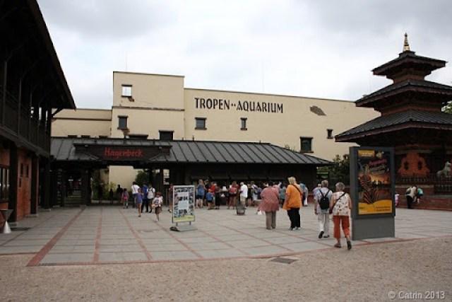 2013-07 Tropen-Aquarium
