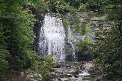 TN SMNP Miegs Falls
