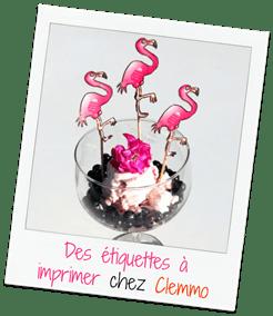 pink-flamingo-clemmo