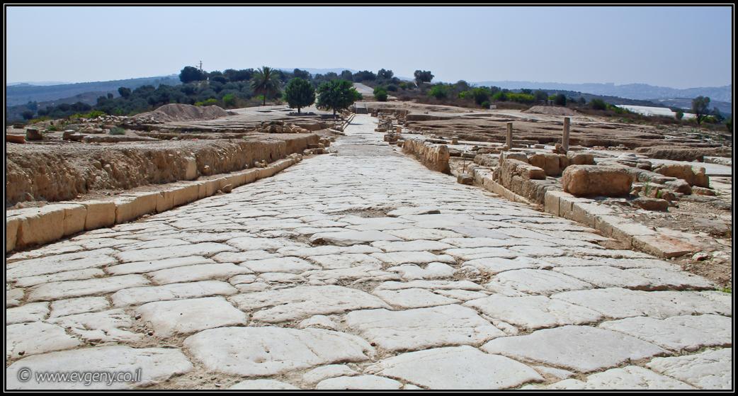 Раскопки в Ципори