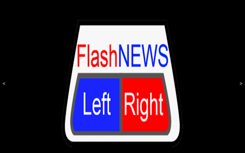 FlashNews: LeftRight screenshot 8