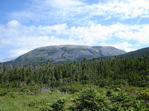 Gros Morne Mountain from a distance