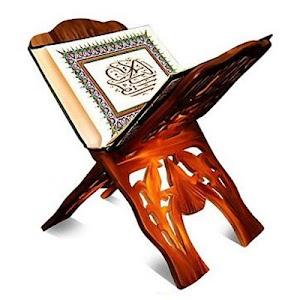 Quran Kareem screenshot 4