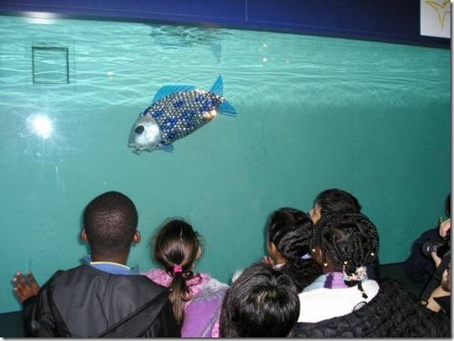 roboticfish-1