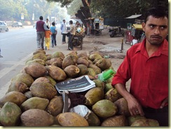 सुबह-सुबह नारियल पानी...