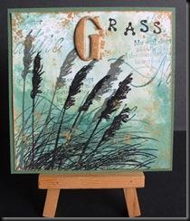 G for Grasses 4x4