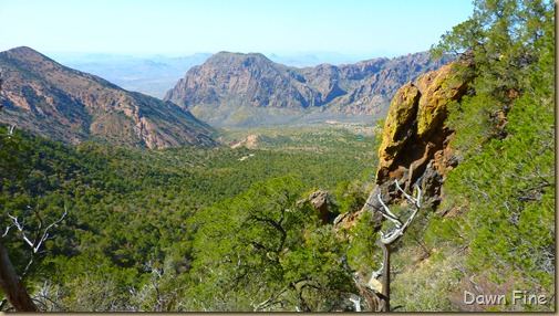 South rim hike,Big bend_086